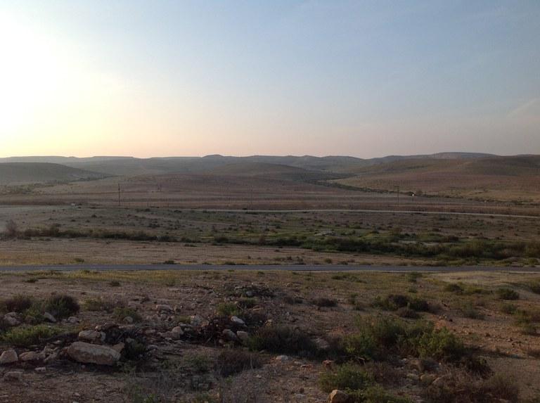 Pele20190327_desert_Negev.JPG